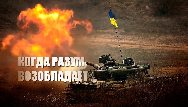 МИД России прокомментировал военные приготовления Украины
